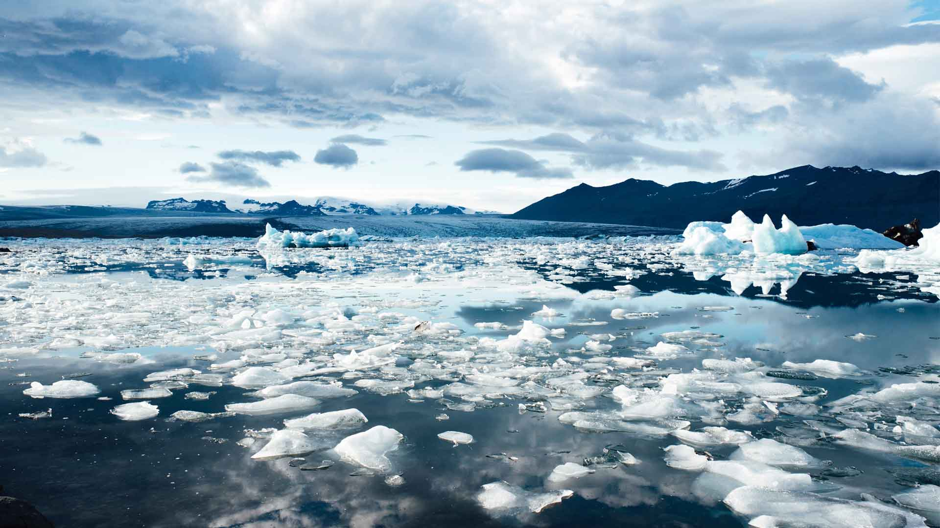 Melting ices due to carbon footprint