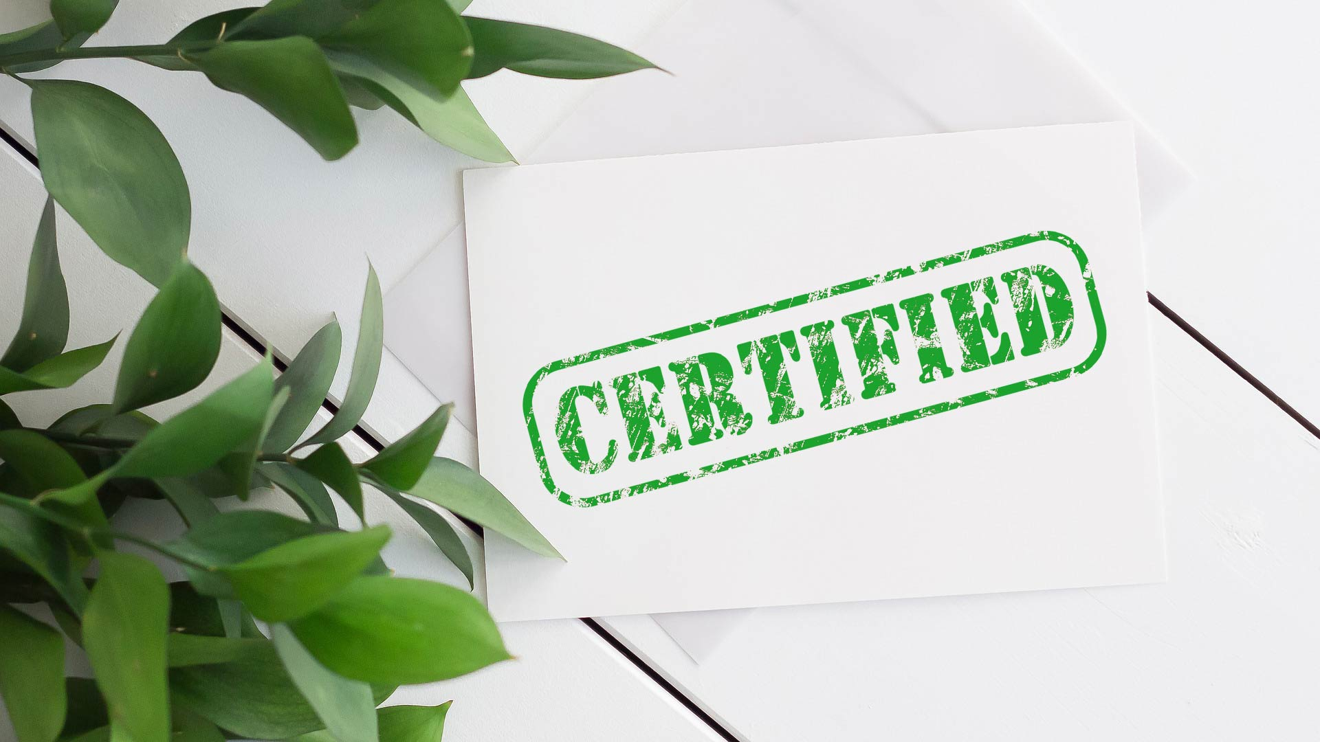 carbon-offset-strengthen-your-brand-image-with-eco-certifications